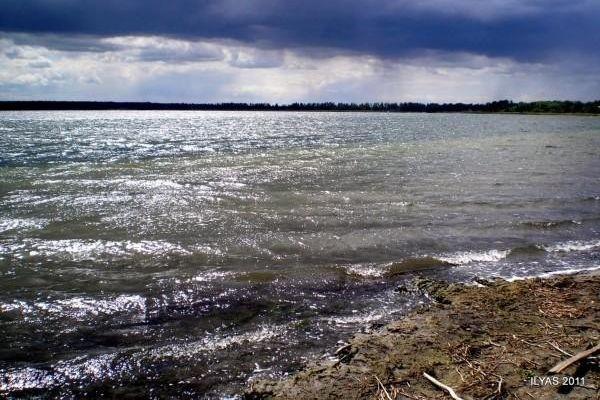 2011 год, северо-восточная часть озера Горькое. Автор: Ильяс Камалов.