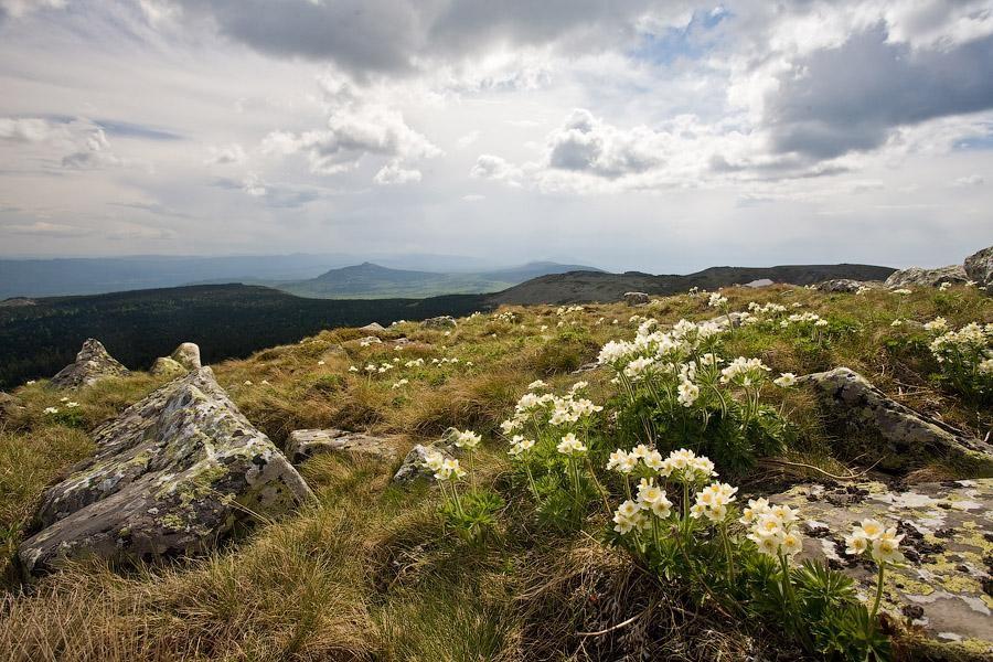 Южный Урал, июнь 2013, гора Поперечная, хребет Зигальга