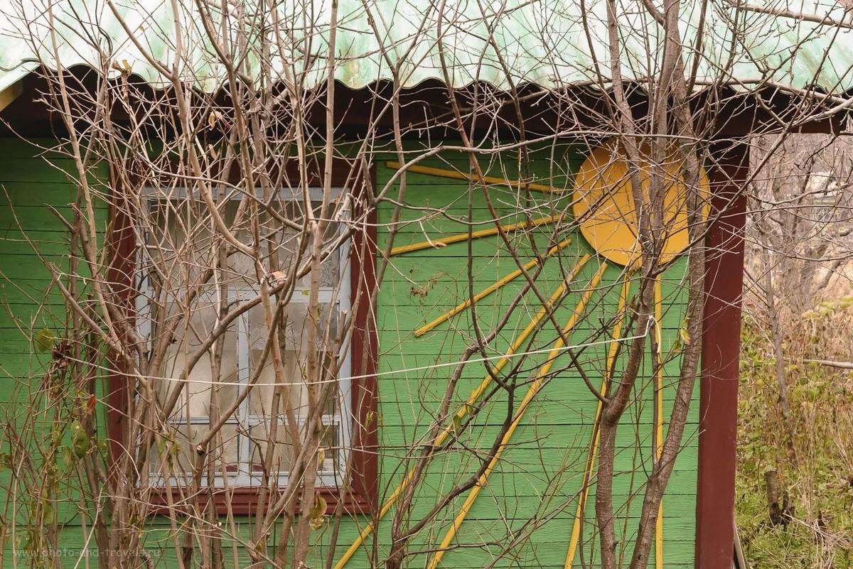 Фотография 29. Позитивный домик. Им осень нипочем. 1/60, 9.0, 3200, 52.