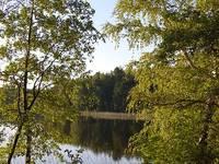 Озеро Долгое 4