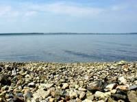 Озеро Касарги. Каменистый берег. Автор: sarnitskiy.