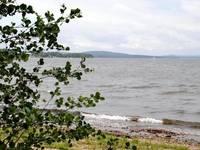 Озеро Синара. Вид с берега. Автор: Людмила Курлова.