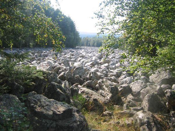 Курумники