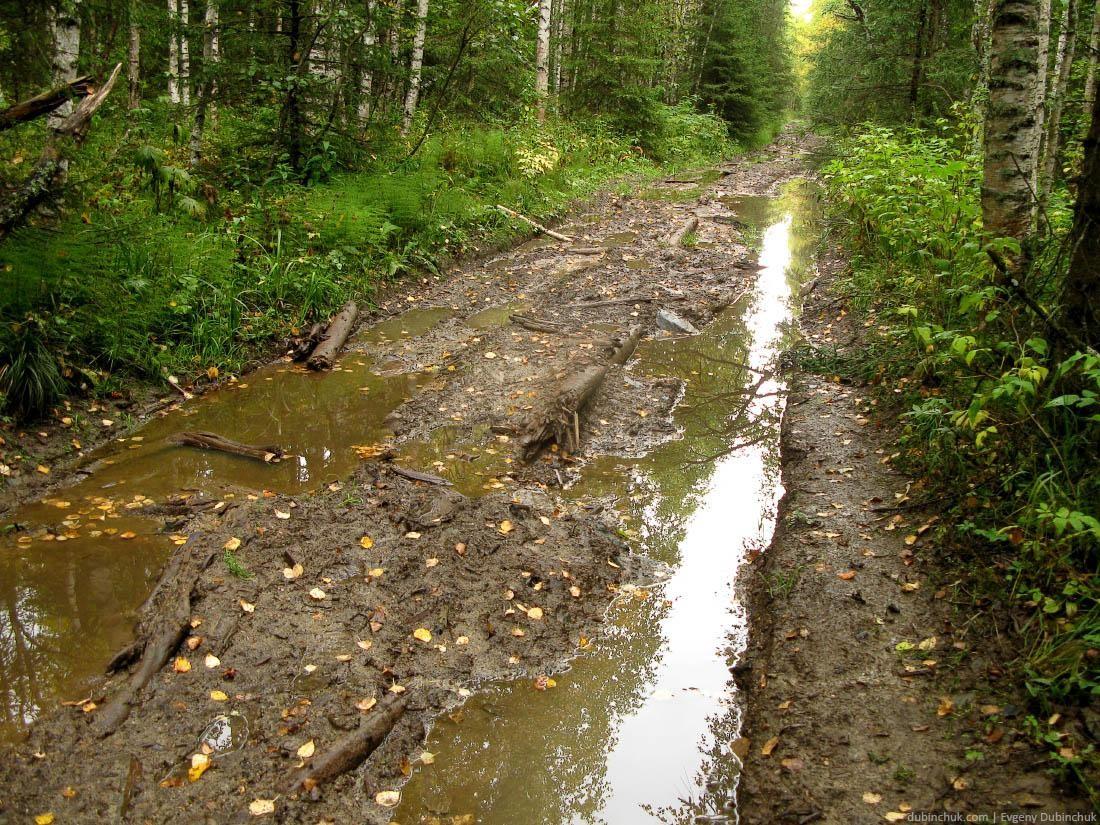 Национальный парк Зюраткуль. Путешествие по Уралу на велосипеде в одиночку. Extremely poor forest road