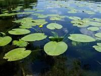 Озеро Бараус 3