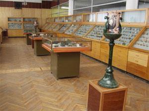 Зал систематической коллекции
