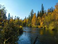 Река Большая Сатка.  Автор: Bestbeer72