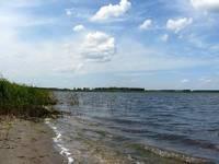 Берег озера Пахомово