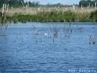 Озеро Байнауш 4