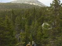 Гора Круглица  8