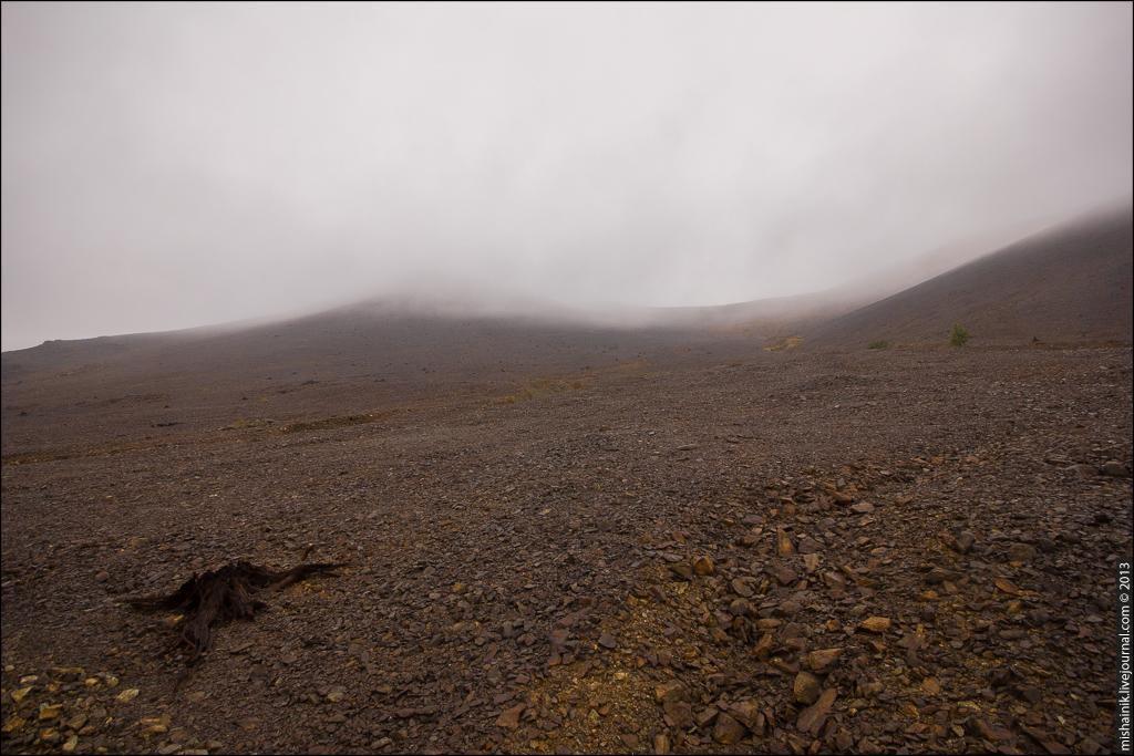 В заброшенных возле Карабаша шахтах пропадает скот