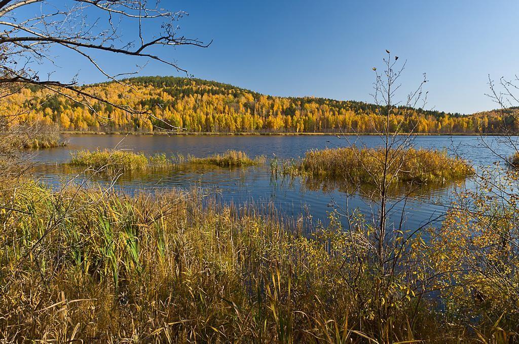 13. Озеро Светленькое у поселка Вишневогорск