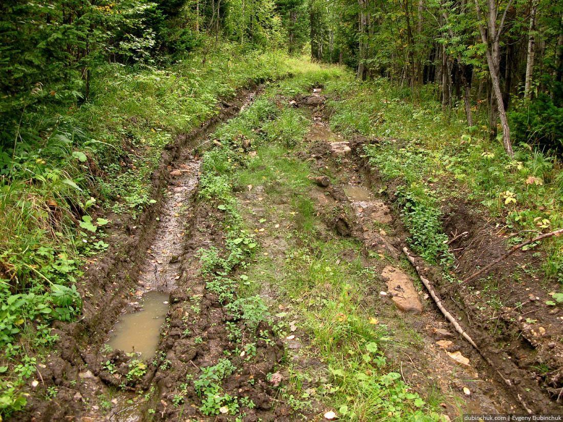 Убитая лесная дорога. Путешествие по Уралу на велосипеде в одиночку. Extremely poor forest road